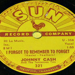 78 rpm I Fogot To Remember To Forget (Sun 321)