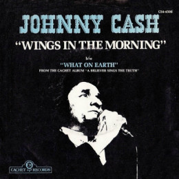 Wings In The Morning (sleeve)